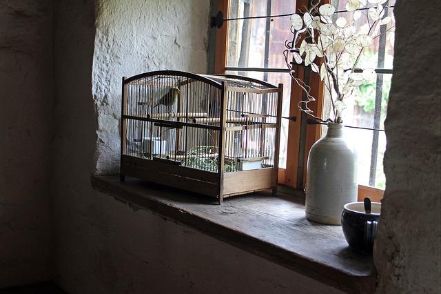 ptačí klec na parapetu